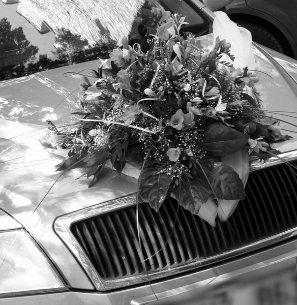 kvetina_na_aute